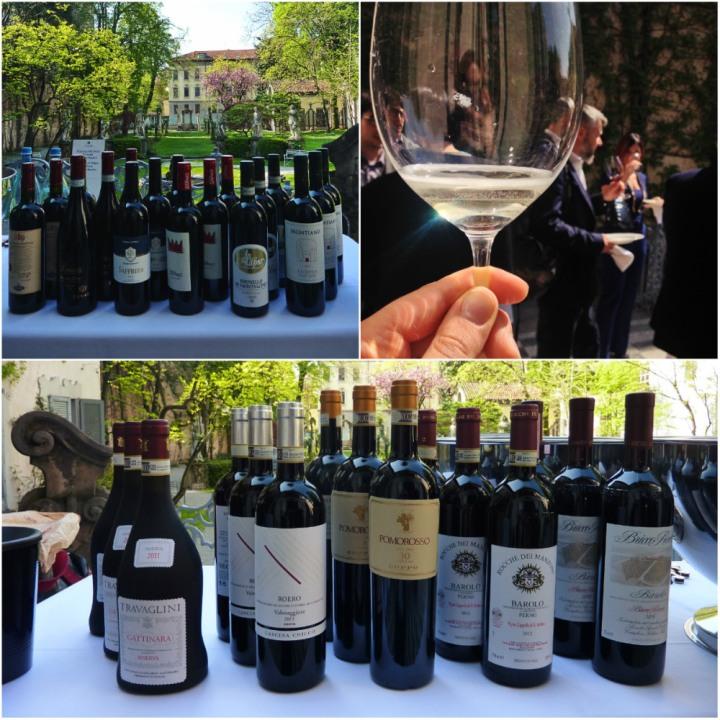 Vineyard of Leonardo da Vinci - The Grand Wine Tour wines - © Diana Zahuranec
